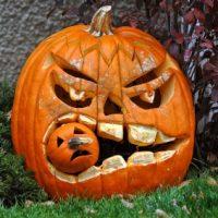 Pumpkin Carving – Tuesday 31st October